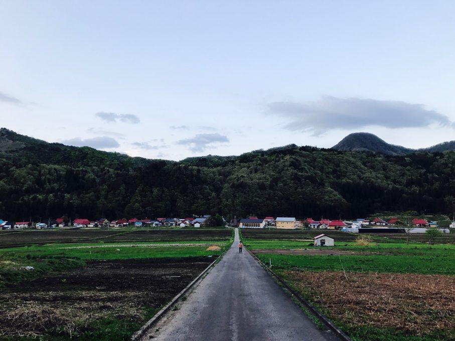 昭和村野尻地区一望