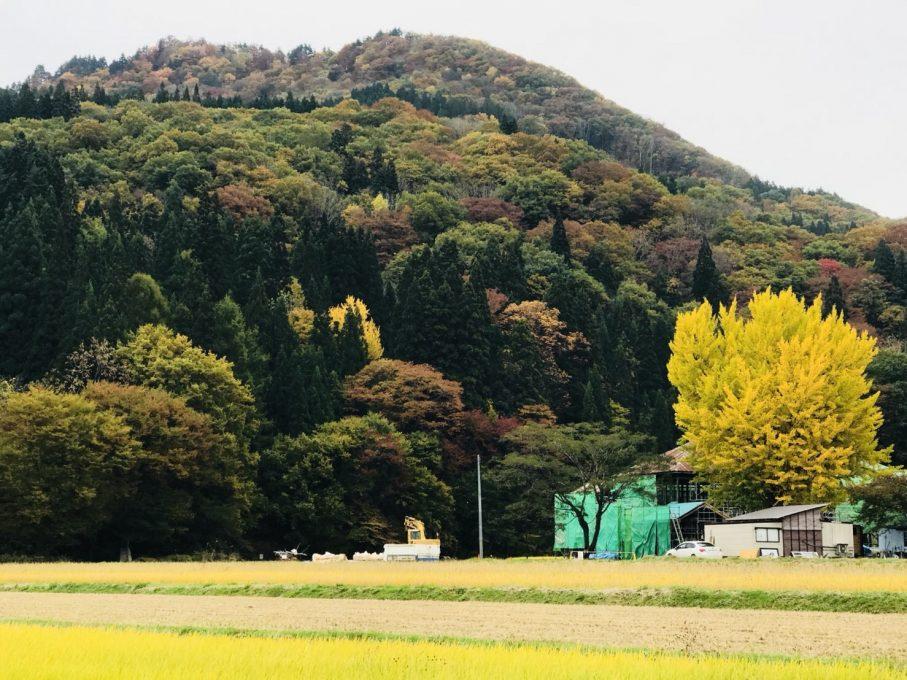 旧喰丸小学校の紅葉