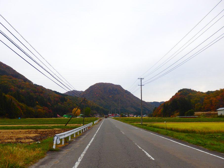 昭和村の紅葉