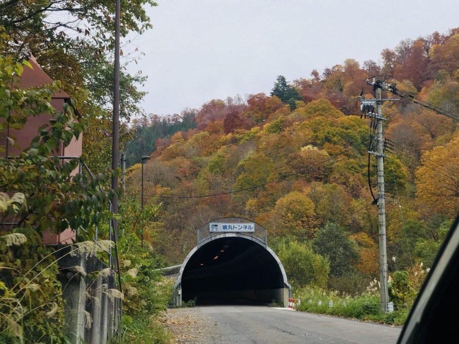 喰丸トンネル付近の紅葉