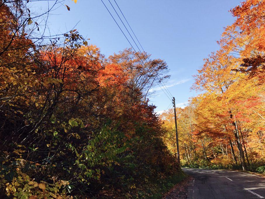 昭和村大芦地区の紅葉