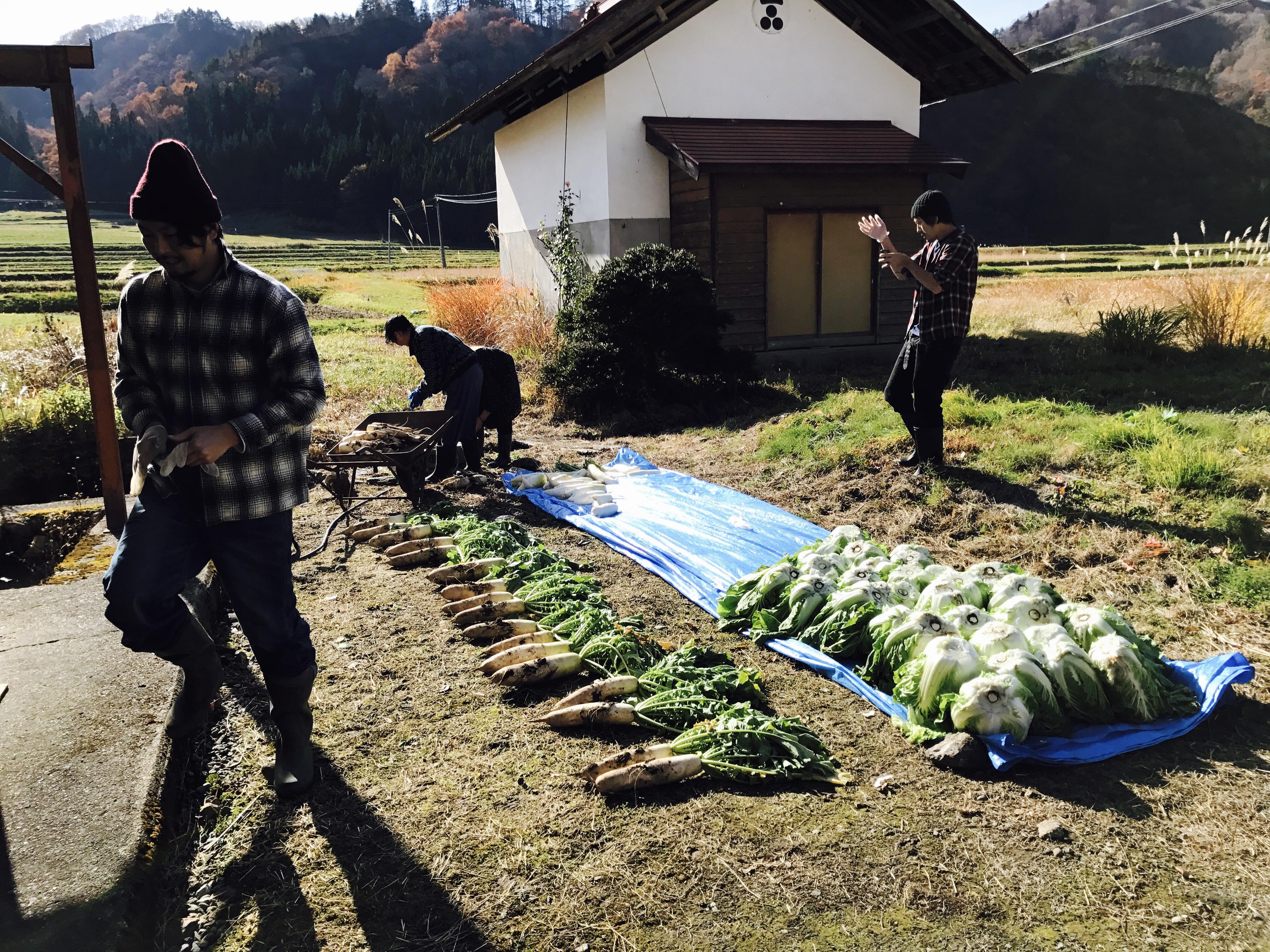 SHAREBASE昭和村