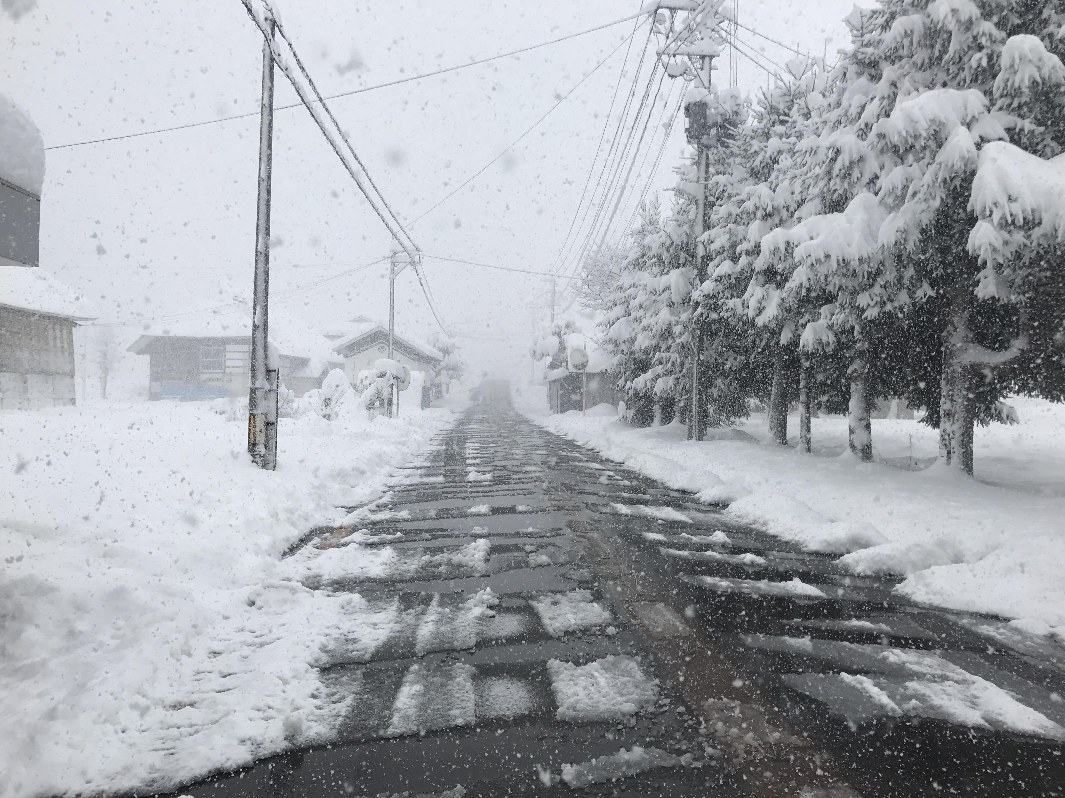 消雪された道路