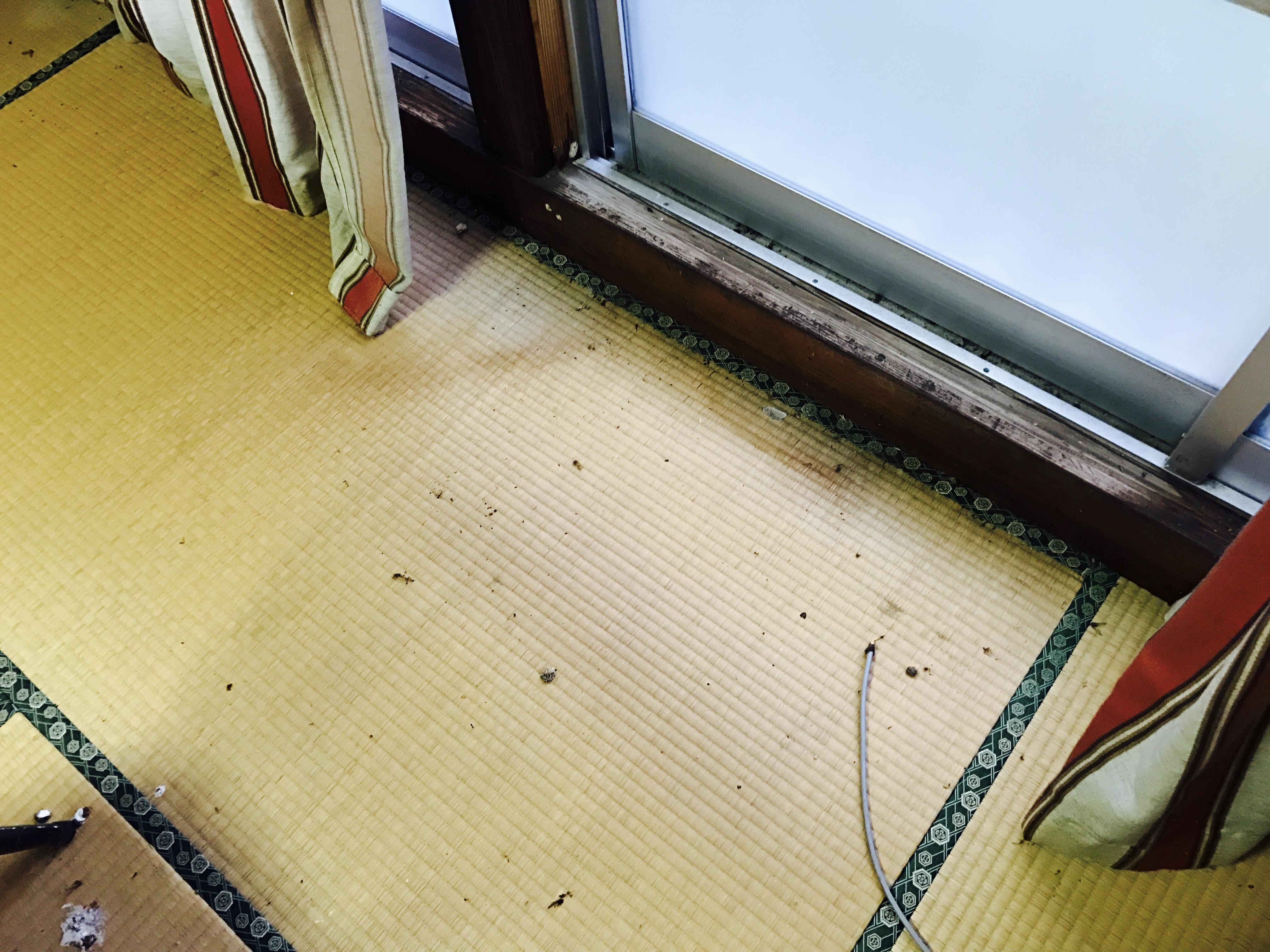 中2階の和室の汚れ