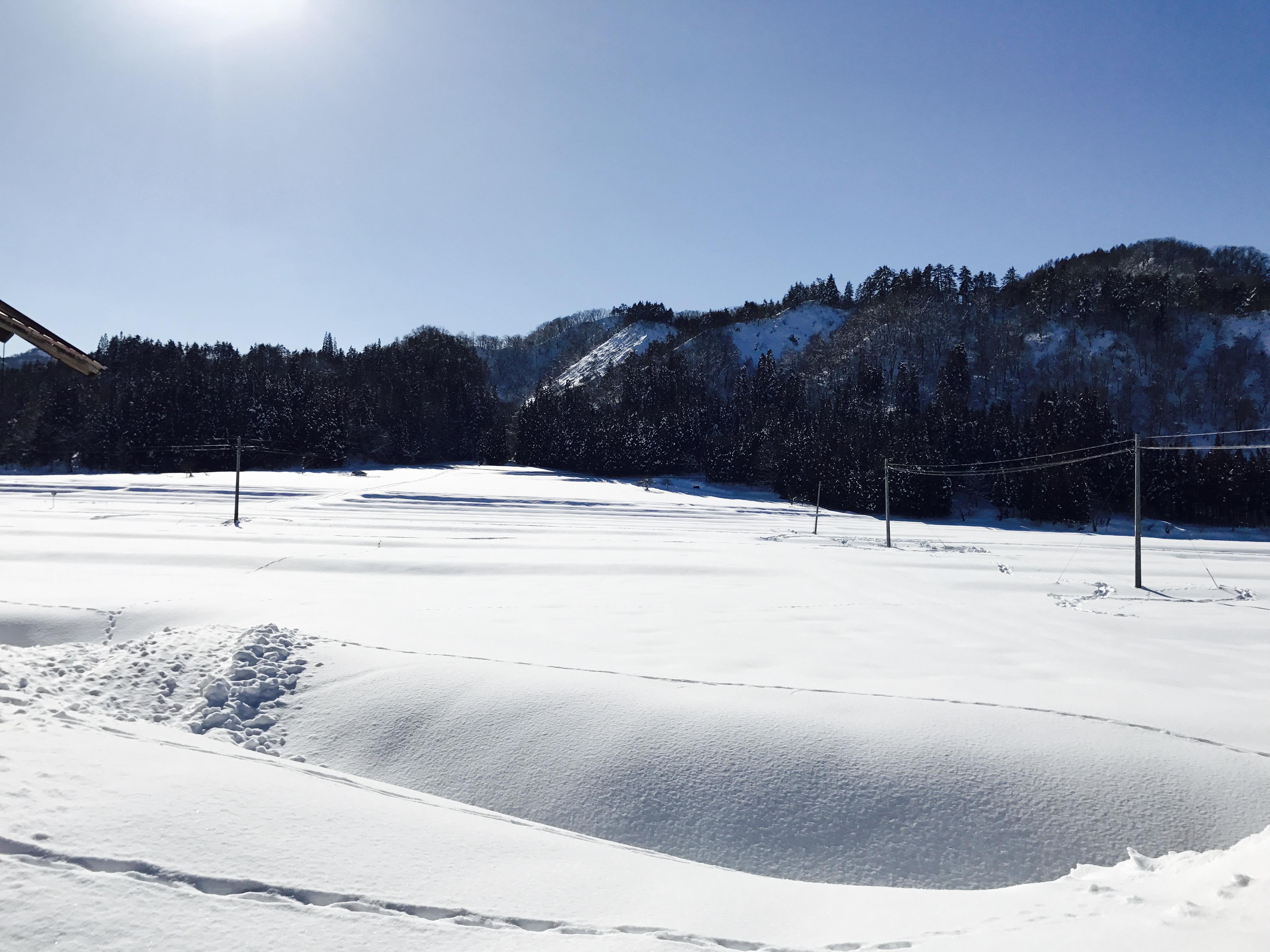 田舎の冬景色