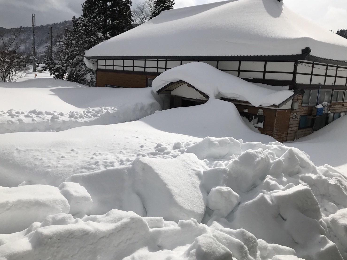 share baseの冬