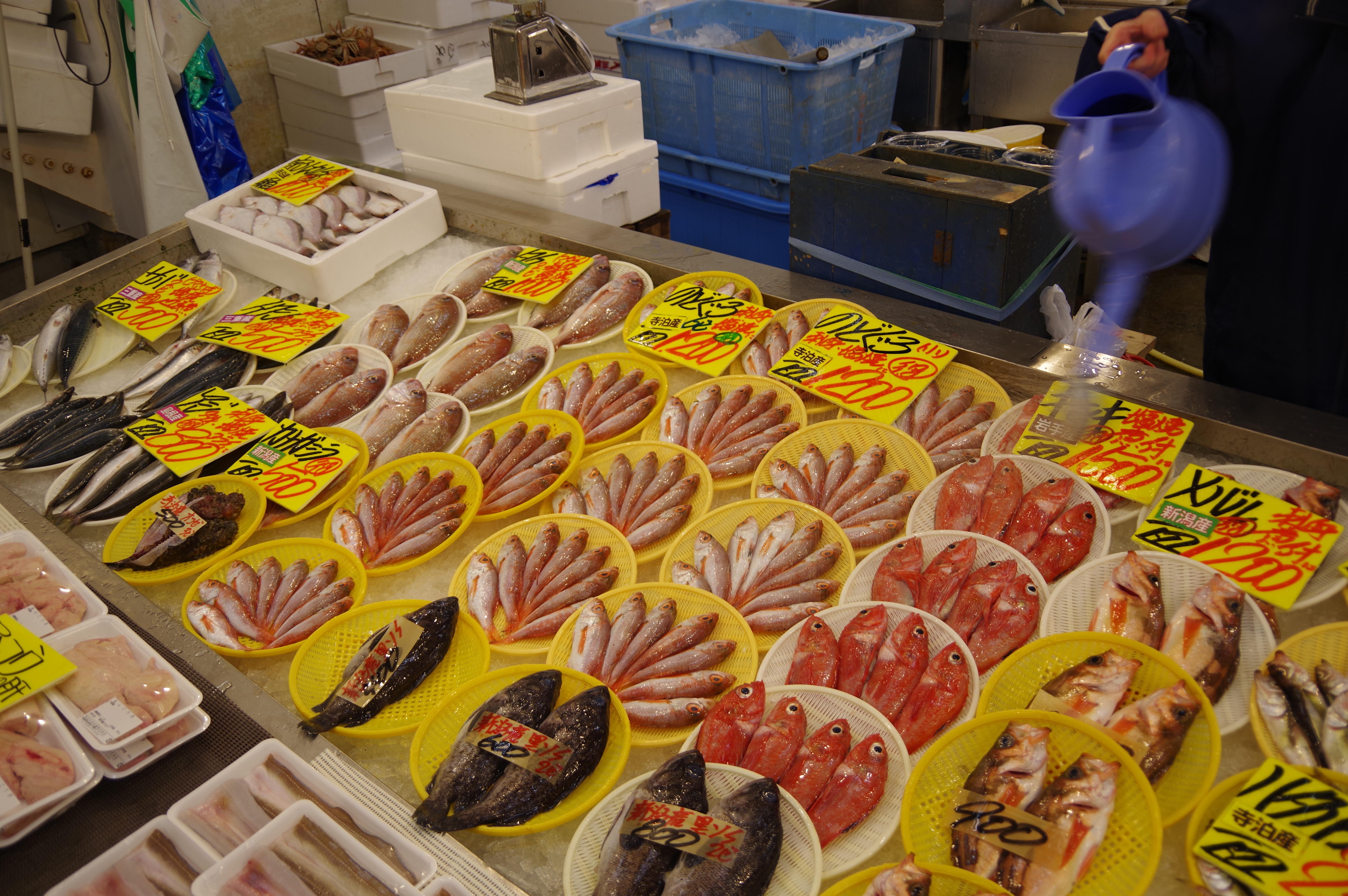 新潟県寺泊の魚市場通りの魚