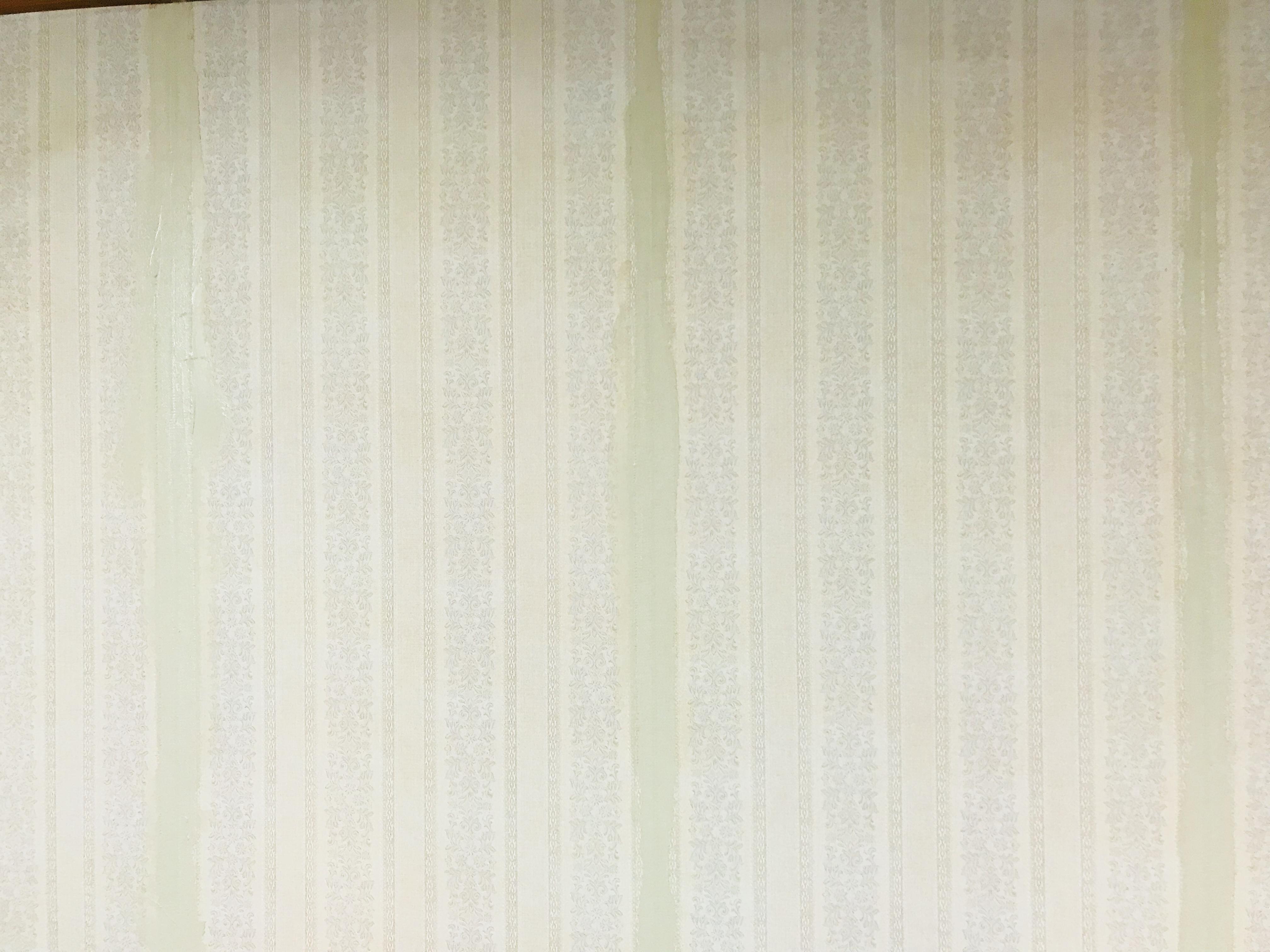 壁紙下地のパテ塗り