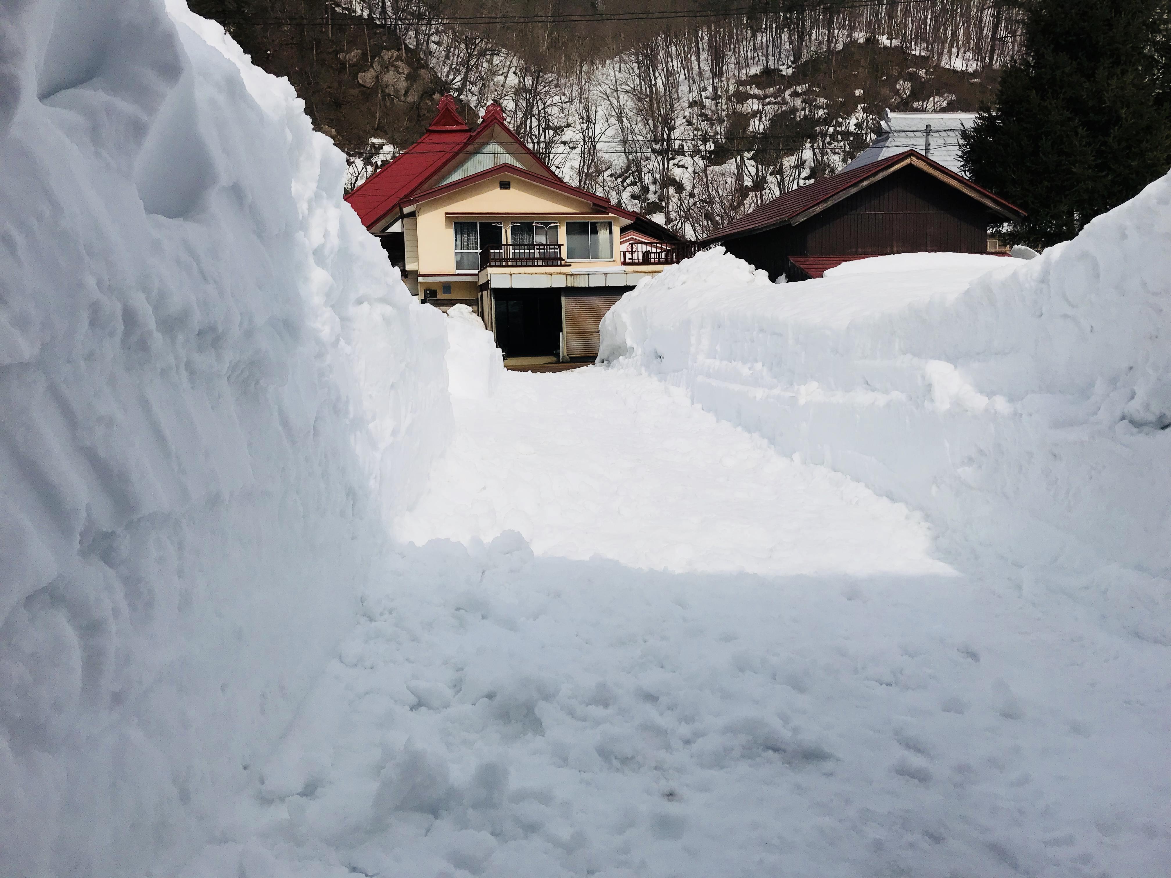 除雪後のSHARE BASE