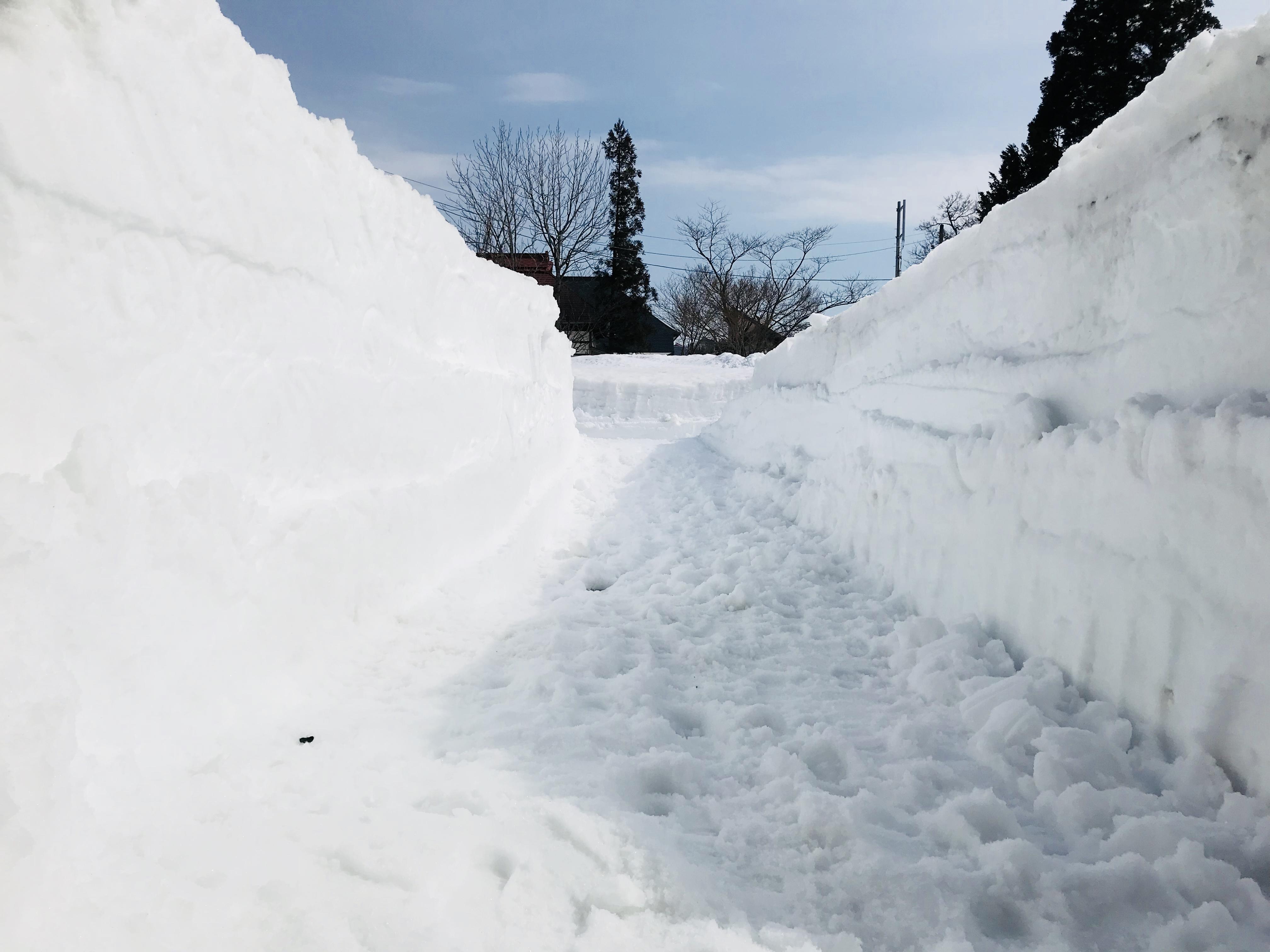 除雪した田舎の民家