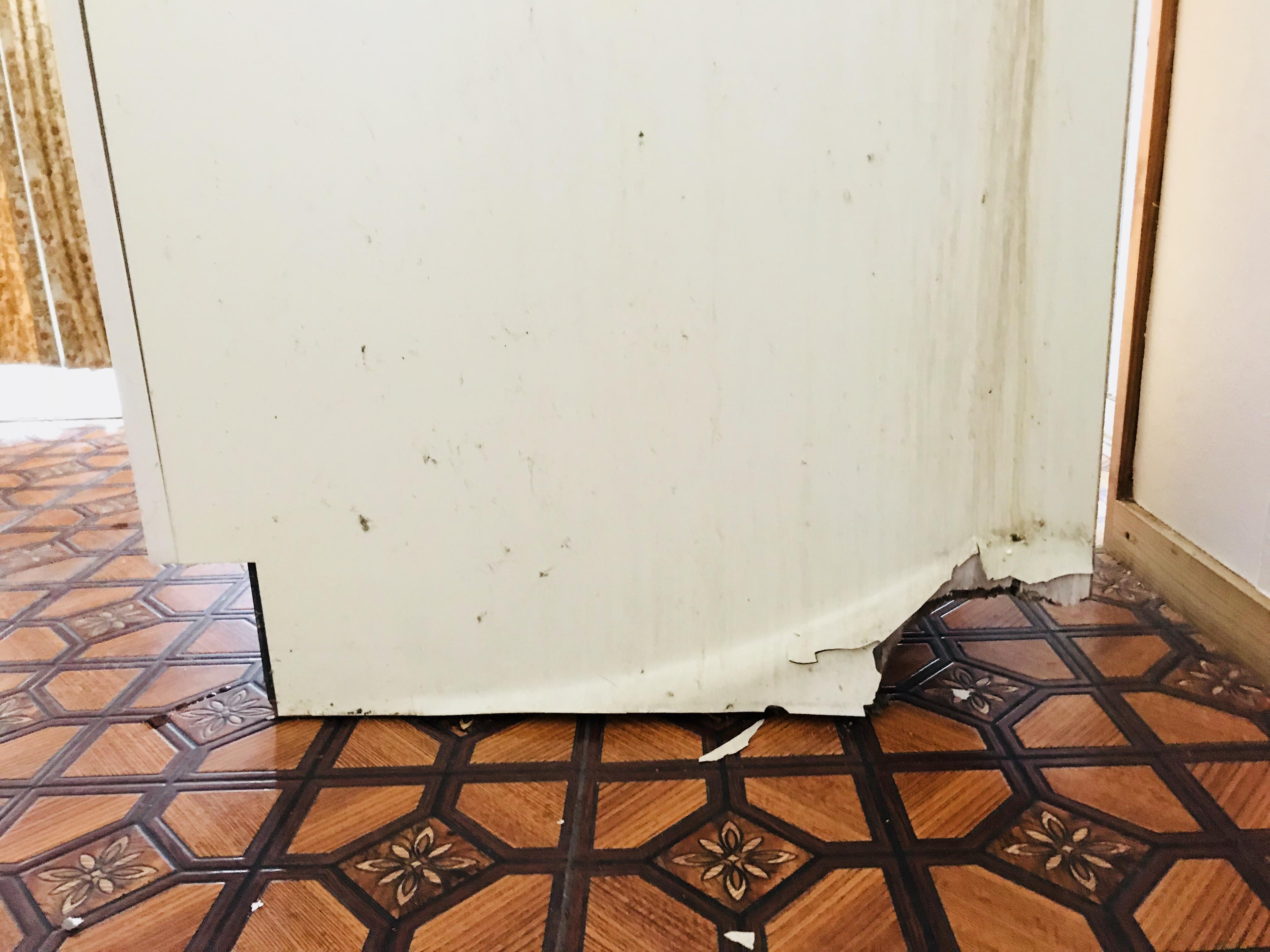 洗面台の下の配管
