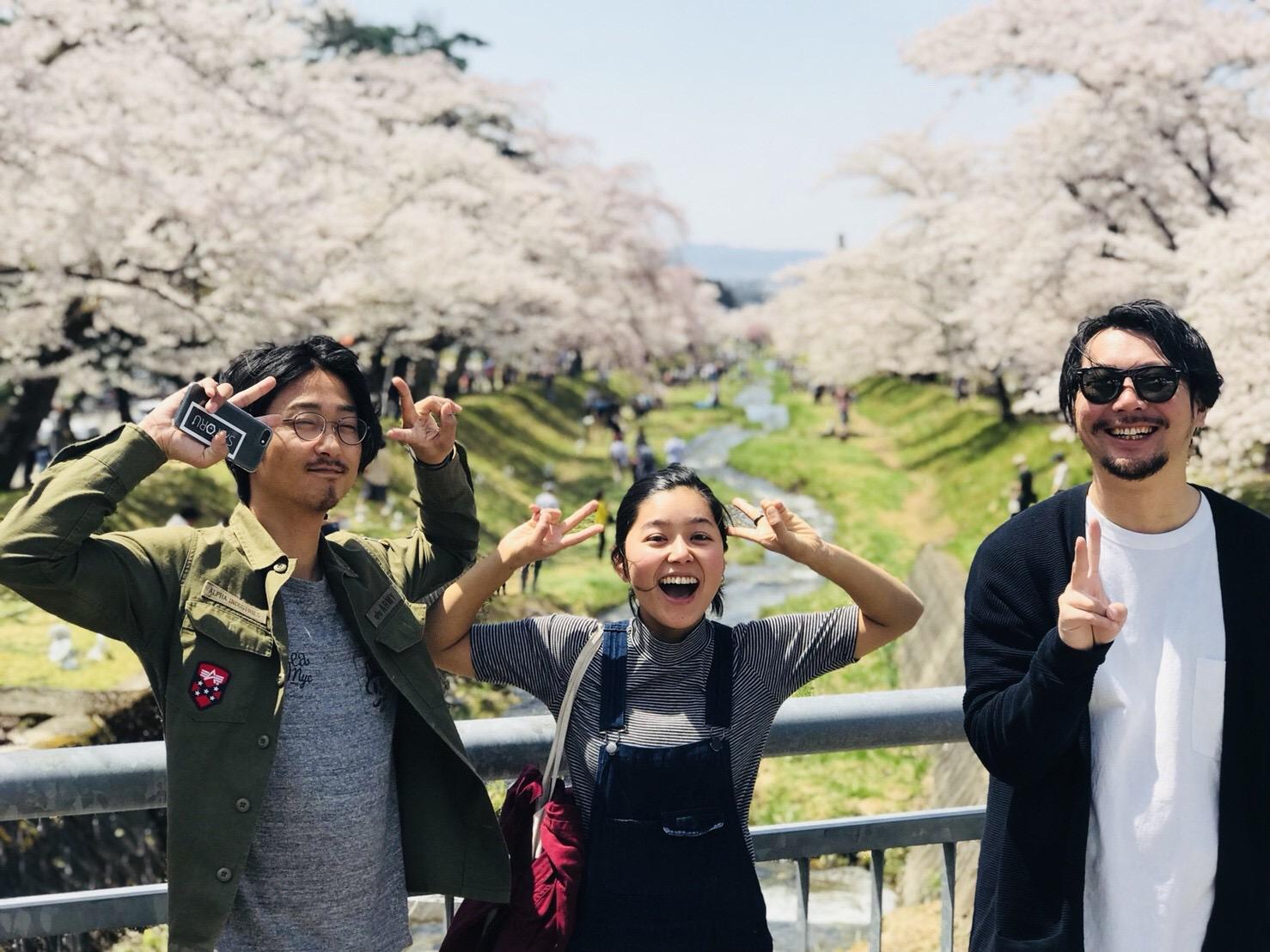 観音寺川の桜まつり