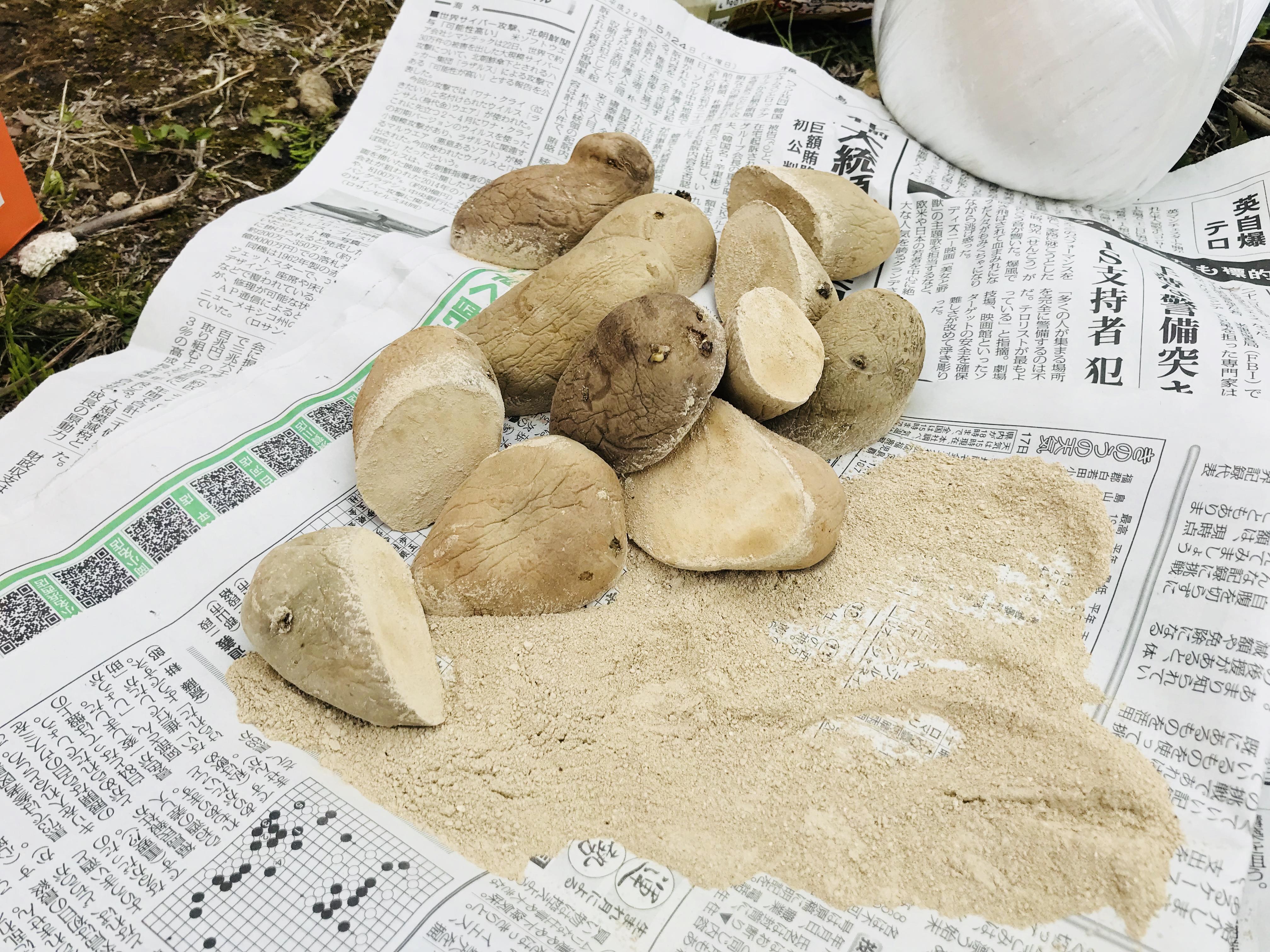 種芋の植え方
