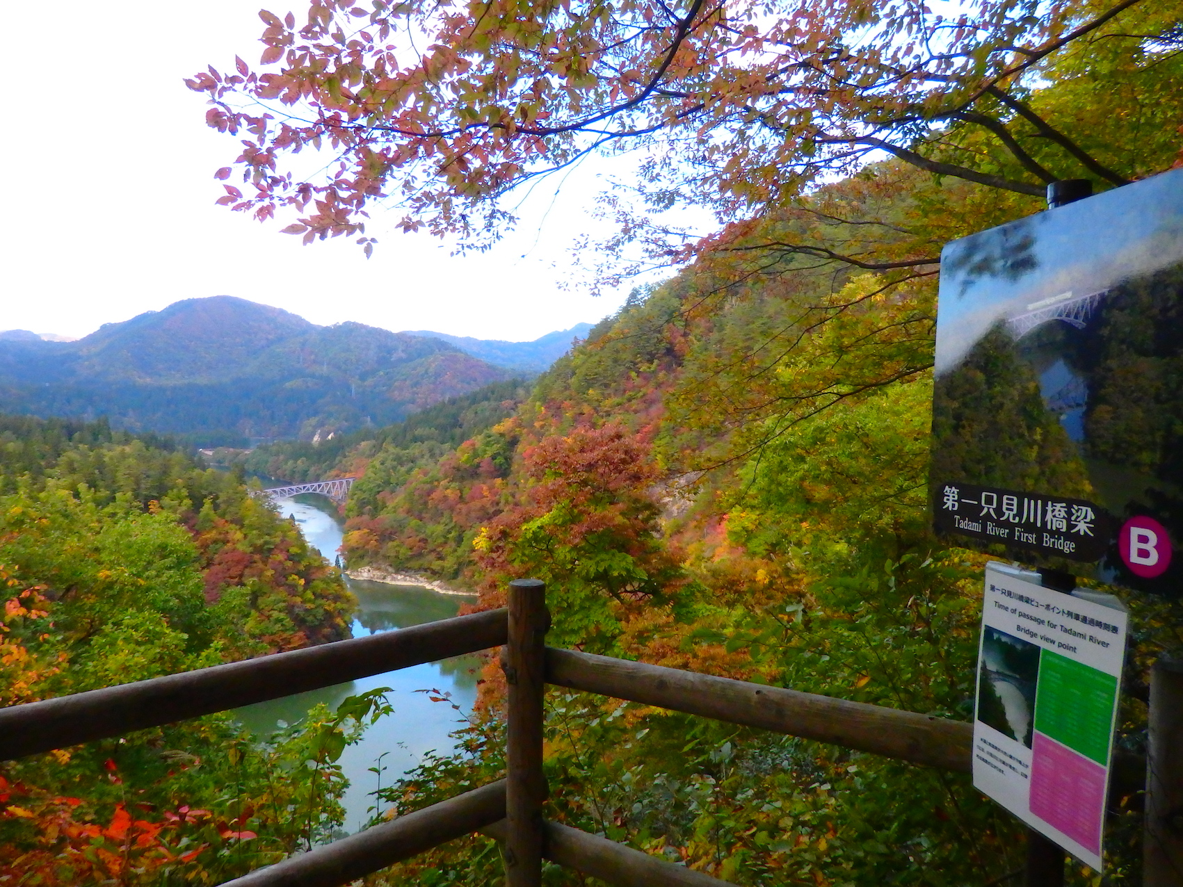 只見川沿いの紅葉