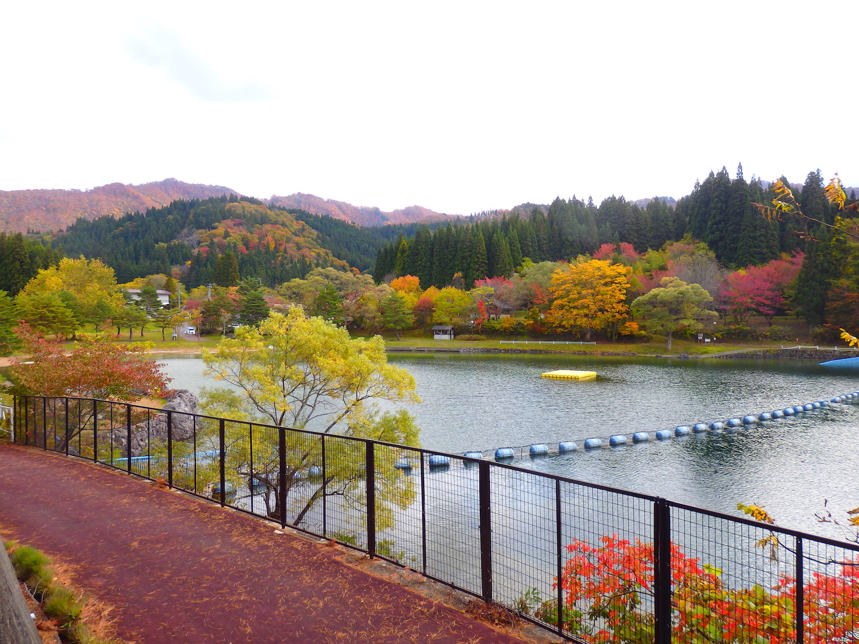 奥会津 沼沢湖の紅葉