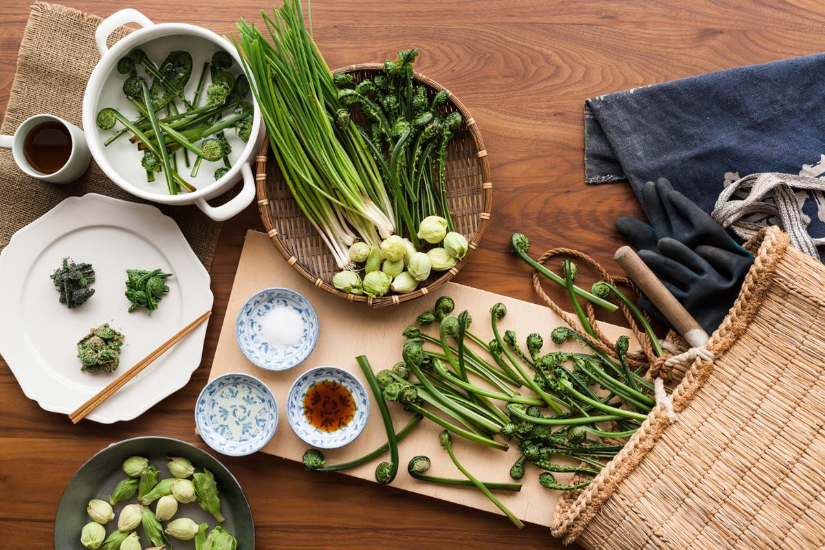 春の美味しい『山菜』と、その自然の恵みで作る絶品料理を大公開!