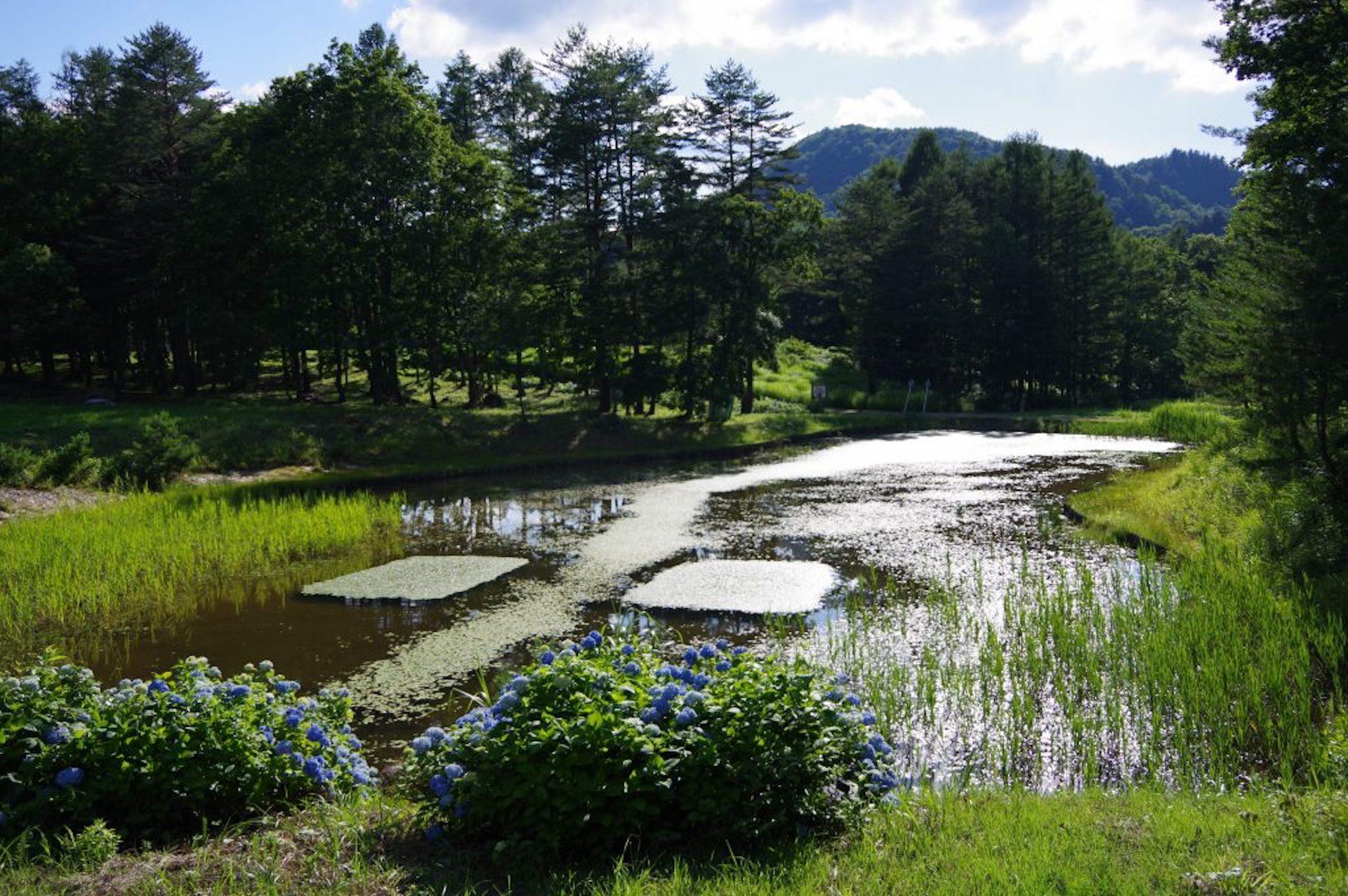 昭和村のキャンプ場