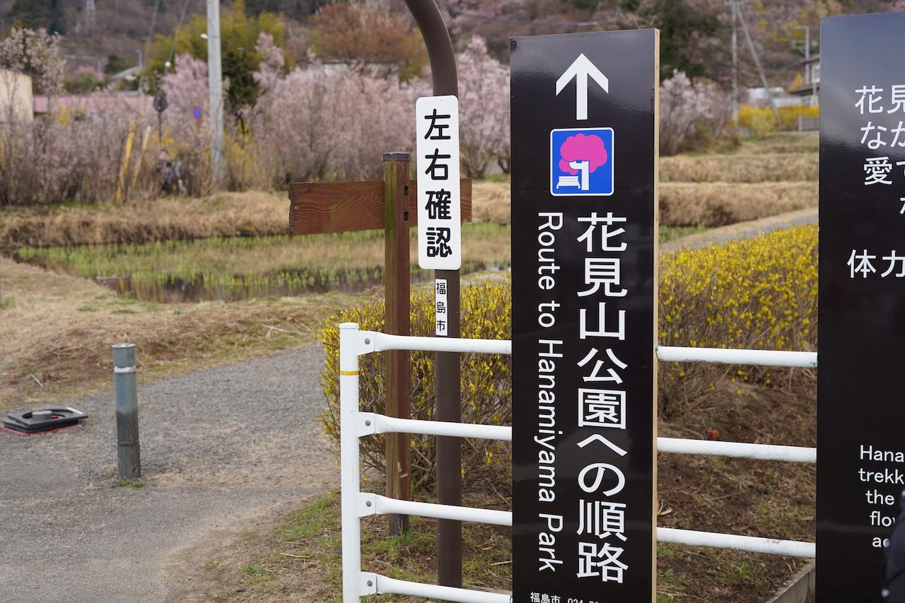 福島の花見スポット