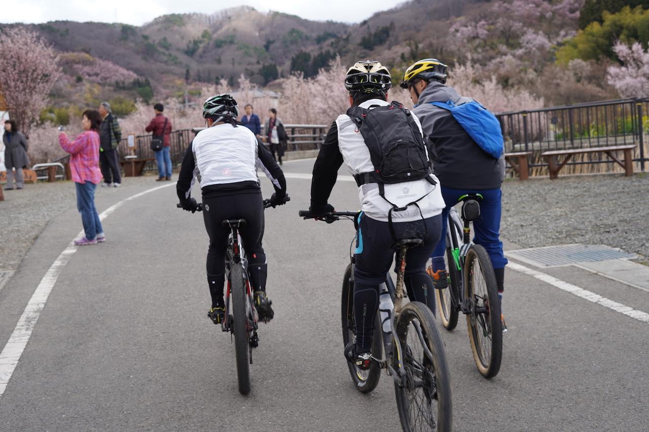 花見山自転車