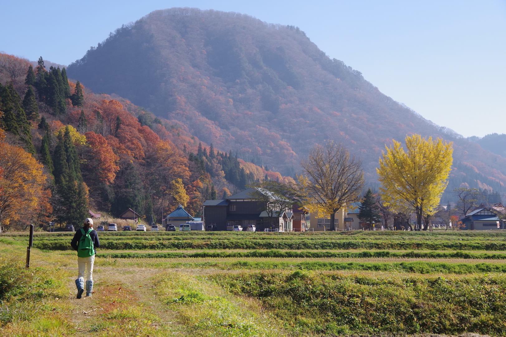 昭和村の景色