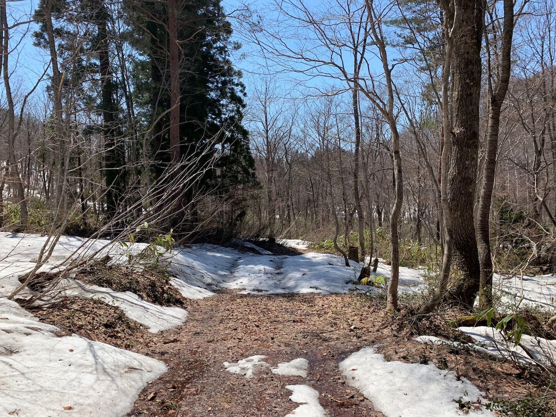 矢ノ原湿原の雪