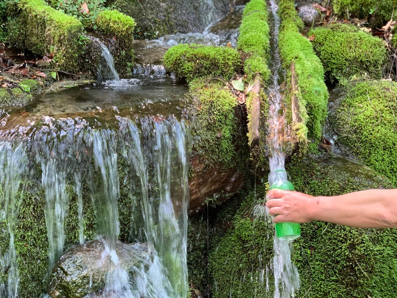 昭和村のおいしい水