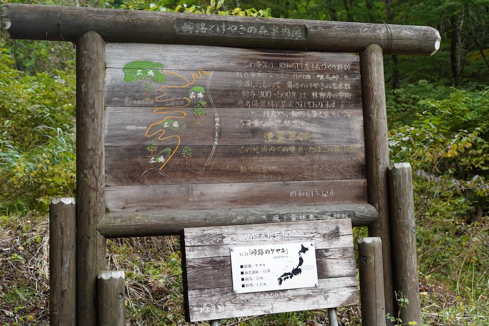 福島県昭和村の馬頭観音