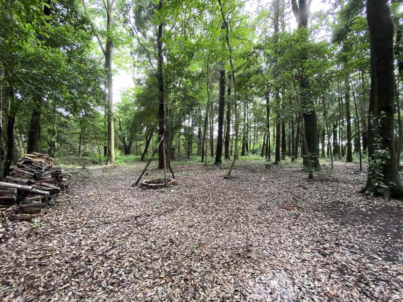 周辺の土地もアウトドア的に活用。キャンプ場も開拓中!